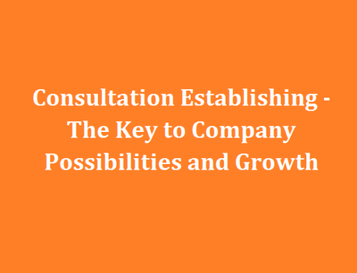Consultation Establishing – The Key to Company Possibilities and Growth